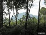 Lot 29 Branchwater Trail - Photo 1