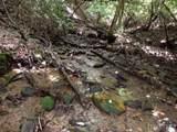 00 Daves Creek Road - Photo 30
