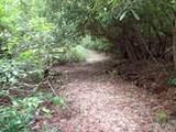 00 Daves Creek Road - Photo 34