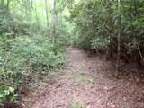 00 Daves Creek Road - Photo 35
