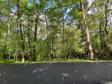 Lot 1&2 Woodland Ridge Drive - Photo 4