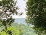 Multiple Flat Mountain Road - Photo 25