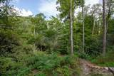 Lot 141 Lonesome Valley Rd - Photo 4