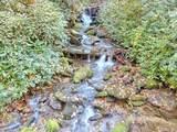 693 Wandering Ridge - Photo 5