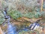 693 Wandering Ridge - Photo 6
