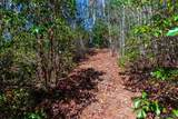 2536 Yellow Mountain Road - Photo 45