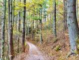 0 Buck Creek Estates Road - Photo 7