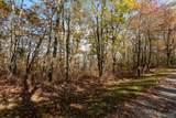Lot 23B Sassafras Ridge - Photo 3