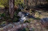129 Outback Lane - Photo 3