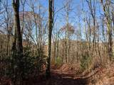 0 Mill Creek Road - Photo 3