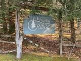 Lot 5 Buffalo Mountain Road - Photo 4