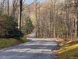 Lot 5 Buffalo Mountain Road - Photo 6