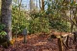 357 Wandering Ridge - Photo 63