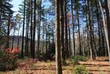 4 Pine Forest - Photo 2