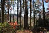 4 Pine Forest - Photo 7