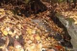 322 Leafy Knoll Circle - Photo 10