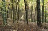 322 Leafy Knoll Circle - Photo 3