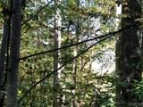 52 West Christy Trail - Photo 1