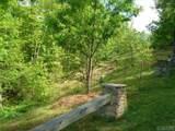 Lot 1 Trillium Ridge Road - Photo 10