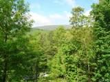 Lot 1 Trillium Ridge Road - Photo 11
