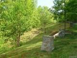 Lot 1 Trillium Ridge Road - Photo 3