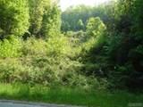 Lot 1 Trillium Ridge Road - Photo 7
