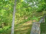 Lot 1 Trillium Ridge Road - Photo 9