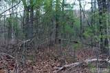 0 Booger Hollow Trail - Photo 4