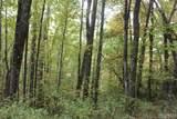 0 Thomas Knob Trail - Photo 2