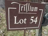 Lot 54 Springhead Trail - Photo 3