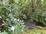 Lot 7 Gorge Trail Road - Photo 13