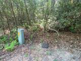 Lot 114 Upper Whitewater Drive - Photo 3