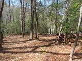 Lot 24 Woods Mountain Trail - Photo 6