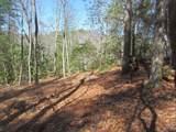 Lot 24 Woods Mountain Trail - Photo 8