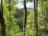 00 Sherwood Forest - Photo 2