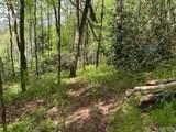 00 Sherwood Forest - Photo 3