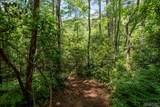Lot 4 Gorge Trail Road - Photo 4