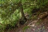 Lot 4 Gorge Trail Road - Photo 5