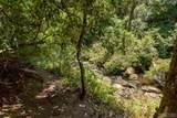 Lot 4 Gorge Trail Road - Photo 6