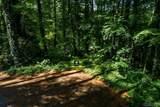 Lot 1 Hummingbird Trail - Photo 16