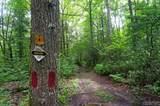 LT 71 Deer Run Road - Photo 3