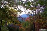 Lot 16 Mountain View Road - Photo 1