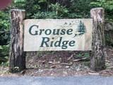 Lot 2 Grouse Ridge Lane - Photo 1
