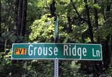 Lot 2 Grouse Ridge Lane - Photo 2