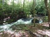1708 Trout Creek Road - Photo 4