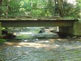1708 Trout Creek Road - Photo 7