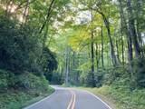TBD Walkingstick Road - Photo 12