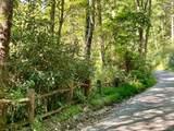 TBD Walkingstick Road - Photo 3