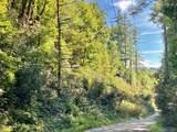 TBD Walkingstick Road - Photo 5