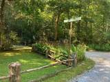 TBD Walkingstick Road - Photo 6